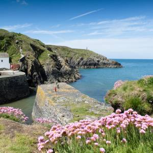 Porthgain in the Spring