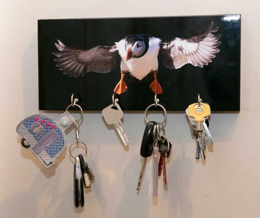 puffin keyrack with keys on showing how useful it is