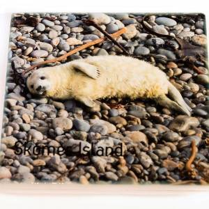 Ceramic Coaster – Available with several images – Choose from Views Gallery