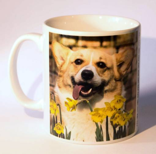 Mug with Pembrokeshire Corgis