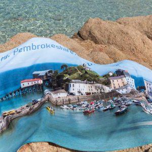 Large Beach Towel – Tenby or Skomer Island Puffin