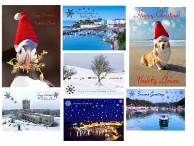 A selection of Pembrokeshire christmas cards