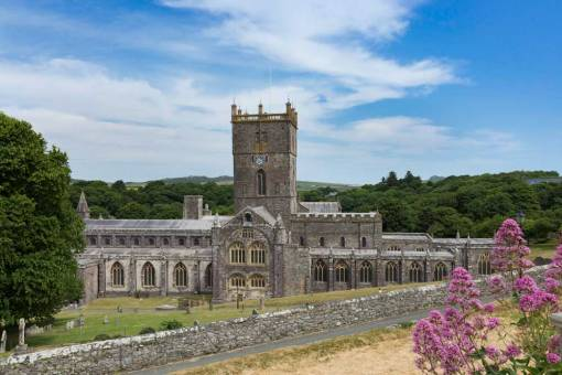 View of St Davids Cathedral from the town with pink flowers in the foreground