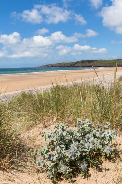 Freshwater West from the Dunes