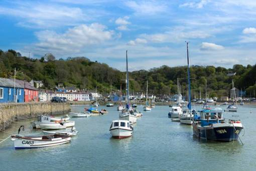 View of the boats on Lower Town Fishguard quay