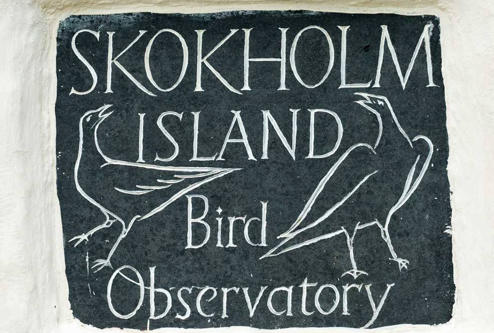 Off Grid Holidays on Skokholm Island