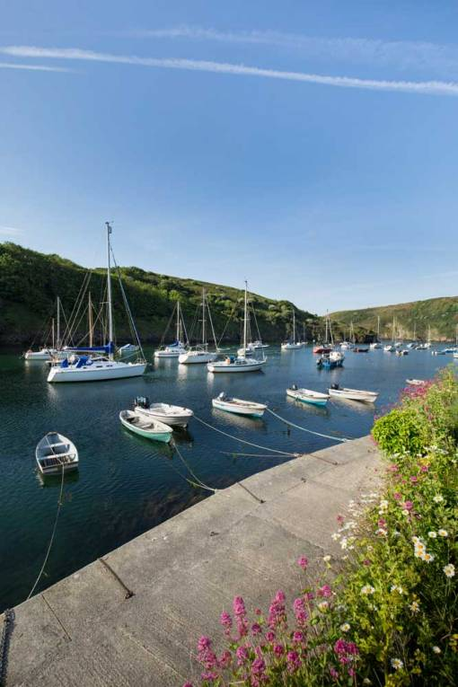 Solva Harbour on a sunny morning from the harbour wall