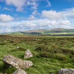 Pembrokeshire Preseli Hills