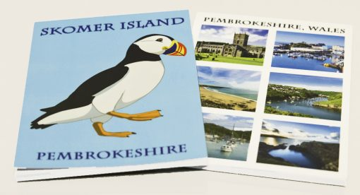 Choice of plain papered pads either with 6 pembrokeshire views or puffin cartoon and words Skomer Island