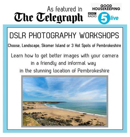 fabulous pembrokeshire photography workshops