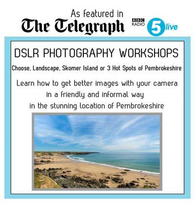 skomer island photography workshops and landscape photography courses in wales