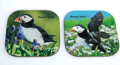 2 puffin images in flowers placed on to high gloss coasters