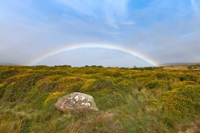 a complete rainbow shining over the Preseli hills