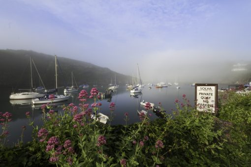 Looking out to sea from Solva quay wall into the mist which is lit by sunlight as it rises off the water