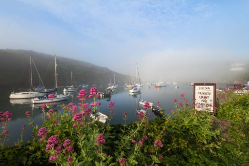 picture taken over pink valerian flowers with harbour sign and a view with boats at their moorings out to the mouth of the harbour with mist lifting into a blue sky