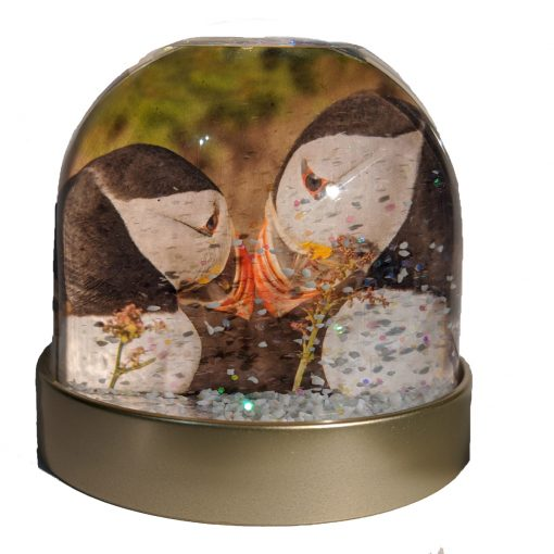 Two puffins billing inside the snowglobe