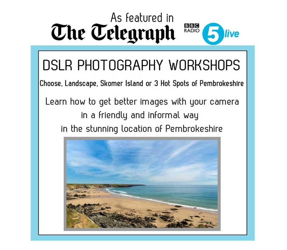 choose between skomer island photography workshops or pembrokeshire landscape workshops