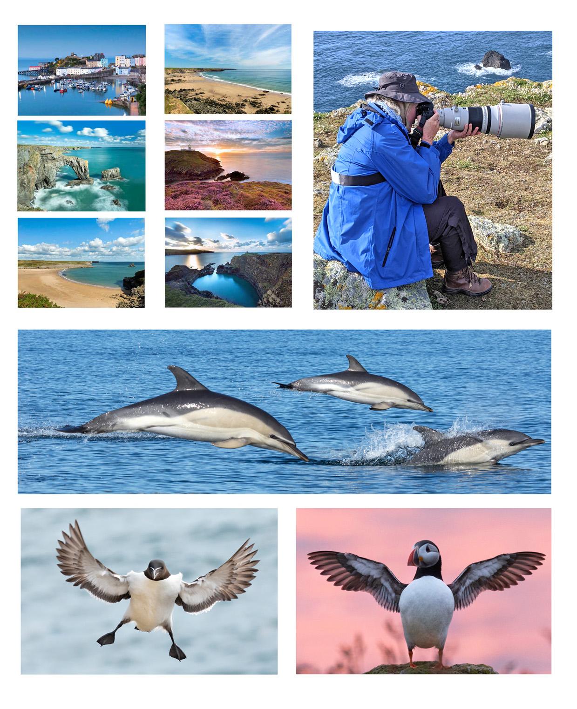 bespoke photography tours of Pembrokeshire